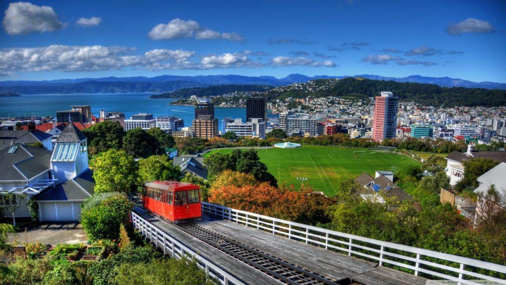 SEO companies in New Zealand